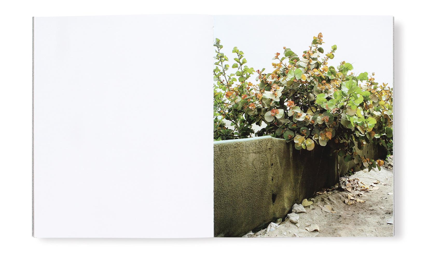 PABLO-HARE-TOLUCA-STUDIO-OLIVIER-ANDREOTTI-04.jpg