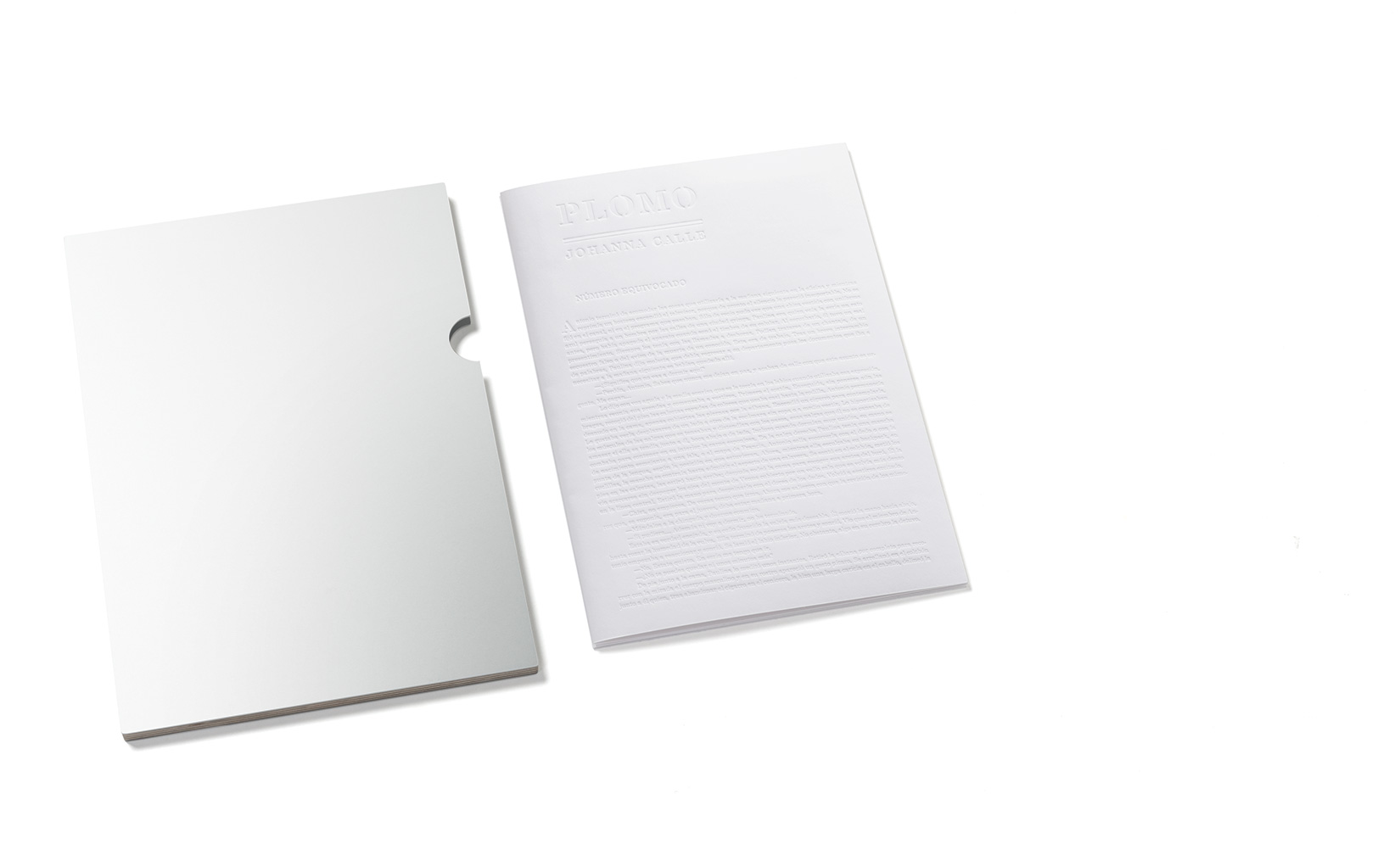 johanna-calle-olivier-andreotti-toluca-editions-02.jpg
